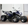 Квадроцикл Yamaha ATV 250 sport